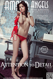 Amour Angels - Attention to Detail